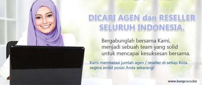 Dicari agen dan reseller Z-Energi seluruh Indonesia